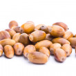 Stock Photo: Collection of acorns isolated on white background
