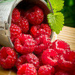 Stock Photo: Delicious fruit berries in metal small pail