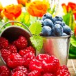 Delicious fruit berries in metal small pail — Stock Photo #32538857