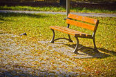 Bench in a park at autumn — Stock Photo