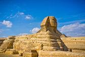 The Great Sphinx in Giza, Egypt — Foto de Stock
