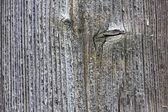 Gamla trä vintage bakgrundsstruktur — Stockfoto