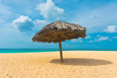 Beautiful beach in Aruba, Caribbean Islands, Lesser Antilles — Stock Photo