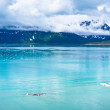 Glacier Bay in Mountains in Alaska, United States — Stock Photo #40029245