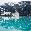 Glacier Bay in Mountains in Alaska, United States — Stock Photo #40030573