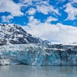 Glacier Bay in Mountains in Alaska, United States — Stock Photo #41229197
