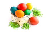 Beautiful decorative easter eggs isolated on white background — Stock Photo