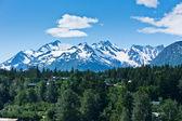 Beautiful view of Haines city near Glacier Bay, Alaska, USA — Stok fotoğraf