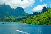 Paradise view of Moorea Islands, Cook's Bay, French Polynesia — Zdjęcie stockowe
