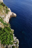The coast of adriatic sea — Stockfoto