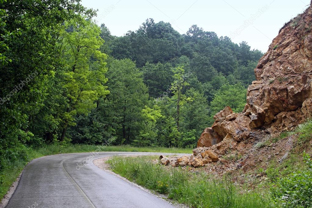 Curved road in rural green woods mountains — Stock Photo #12481526