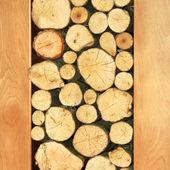 Tronchi di legno — Foto Stock