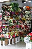 Flower shop — Stock Photo