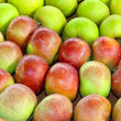 Apples variety — Stock Photo