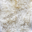 Fur material — Stock Photo