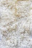 Fur material — Stock Photo