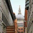 St Pauls Cathedral — Stock Photo #14430965
