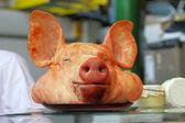 Głowę świni — Zdjęcie stockowe