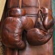 Boxer gloves - Foto de Stock