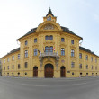Szeged City Hall — Stock Photo #14885263