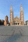 Votive Cathedral Szeged — Stock Photo