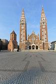 Votive Cathedral Szeged — Stock Photo