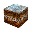 Leopard stool isolated — Stock Photo