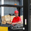 Forklift driver — Stock Photo #20170029