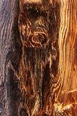 Wood knot — Stock Photo