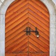 Castle door — Stock Photo #22605751