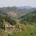Rijeka Crnojevica — Stock Photo #22606777
