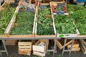 Groene groenten — Stockfoto