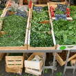 Stock Photo: green vegetables&quot