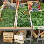 Green vegetables — Stock Photo