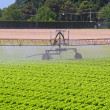 Water irrigation sprinkler — Stock Photo