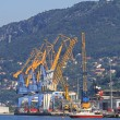 Port of Trieste — Stock Photo