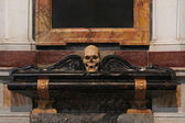 Death skull — Stock Photo