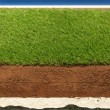 Stock Photo: Synthetic grass layers
