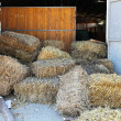 Stables hay — Stock Photo