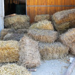 Hay stables — Stock Photo
