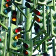 Traffic lights — Stock Photo #31584027