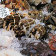 seafood market — Stock Photo