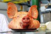 Pig head — Stock Photo