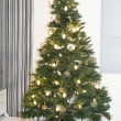 Christmas tree — Stock Photo #33090693