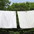 Clothes line — Stock Photo