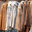 Fur clothing — Stock Photo