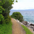 Sea shore path — Stock Photo