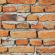 Brick wall — Stock Photo #35007733
