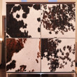 Cowhide cabinet — Stock Photo #35362299