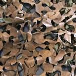 Camouflage — Stock Photo #36230495